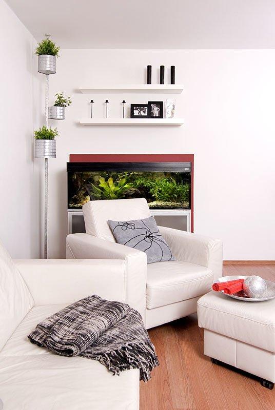 salon- akwarium,Małe mieszkanie dla rodziny