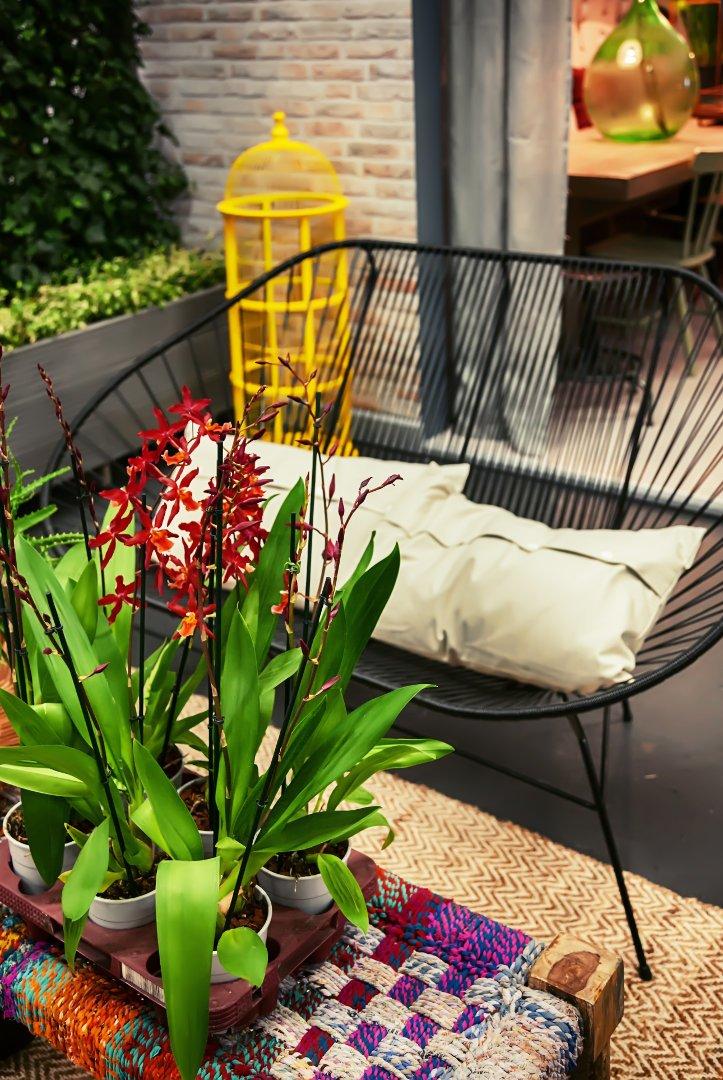 ogród na wiosnę,metalowe meble czarne, kolorowe kwiaty, szare poduszki