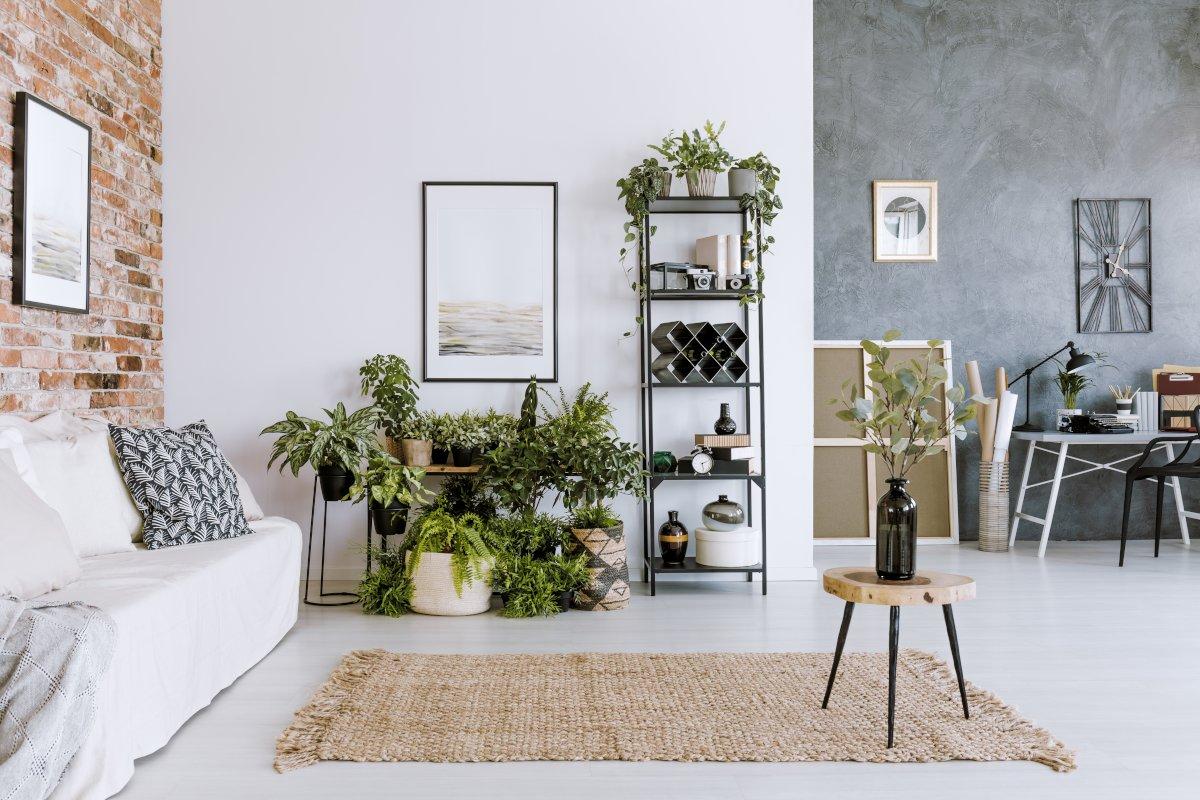Dekoracje do salonu, pomieszczenie z dużą ilością roślin domowych roślin doniczkowych, regał na którym stoją rośliny doniczkowe i ozdoby dekoracje, po lewej stronie ściana z naturalnej starej cegły i kanapa z białym przykryciem, w tle betonowa ściana z białym biurkiem i czarnym krzesłem, na ścianie duży kwadratowy metalowy zegar
