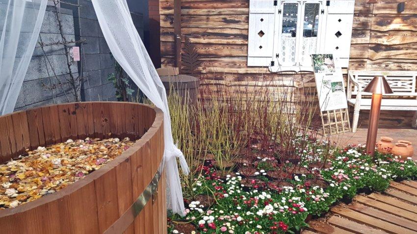 Targi Green Days, wystawa ogrodnicza, drewniana bania do kąpieli, kolorowe stokrotki na trawniku. miedzian lampa ogrodowa, w tle wiejska chata z białymi okiennicami