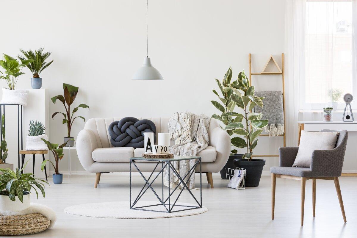 Jak nie urządzać mieszkania,Przemysłowy stolik kawowy pośrodku skandynawskiego wnętrza salonu z białą sofą, szarym krzesłem, dużą iloscią roślin doniczkowych