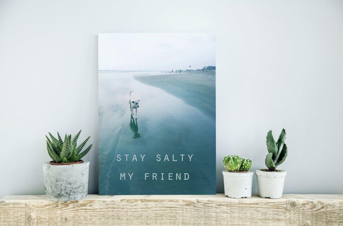 Dekoracje do salonu, na półce z drewnianej belki stoją doniczki z kaktusami, na środku stoi plakat z widokiem na plażę, plakat w tonacji niebieskiej, na plakacie plaża, samotny piec i napis Stay Salty My Friend