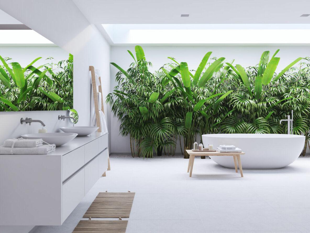 Rośliny w łazienkach- stolik