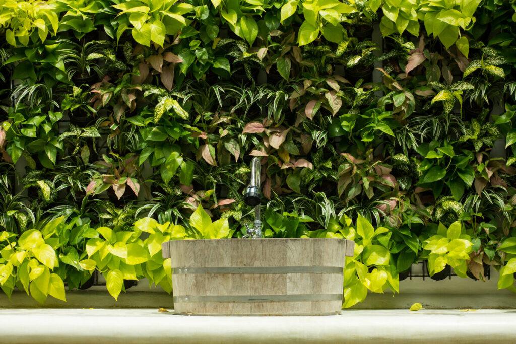 Rośliny w łazienkach- drewniany zlew