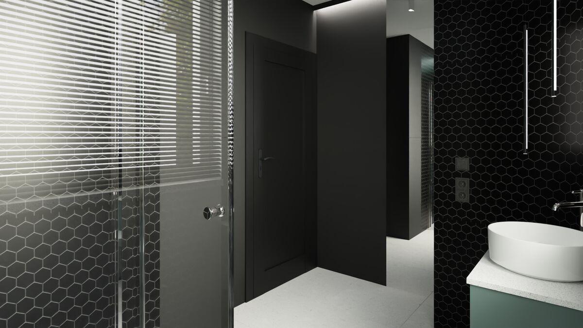 Projekt małej łazienki z prysznicem- drzwi wejściowe